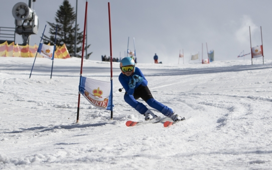 Zawody o puchar Wójta gminy Łodygowice w narciarstwie zjazdowym